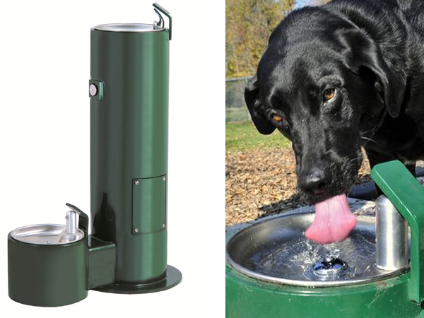 doggie watering drinker