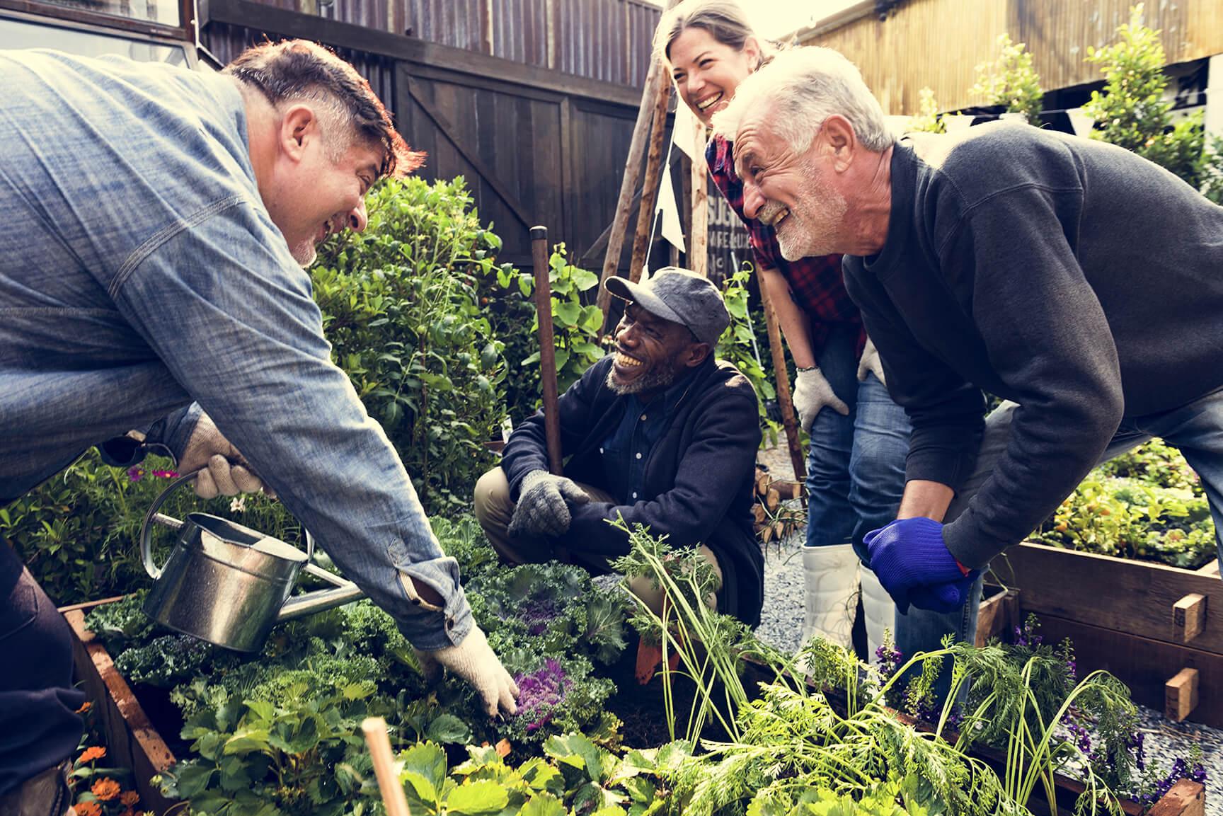 Gardening community